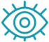 eye-icon